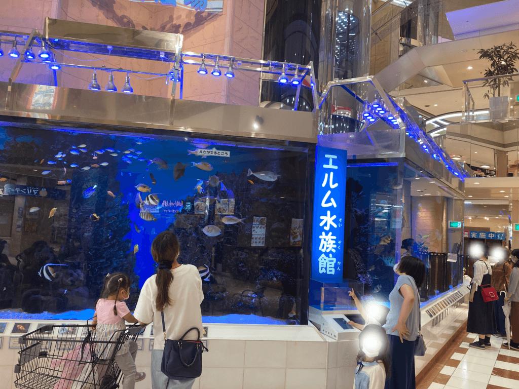 エルム水族館