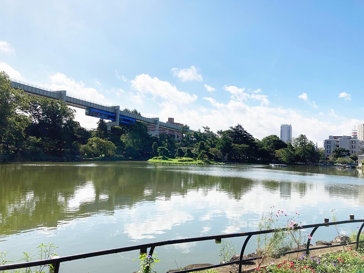 156【千葉公園駅周辺を歩いてみた】癒やしと憩い、ツリーハウスが楽しめる街