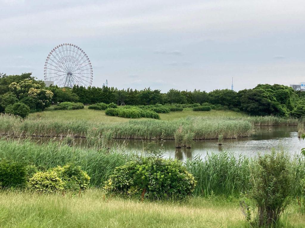 葛西臨海公園・鳥類園