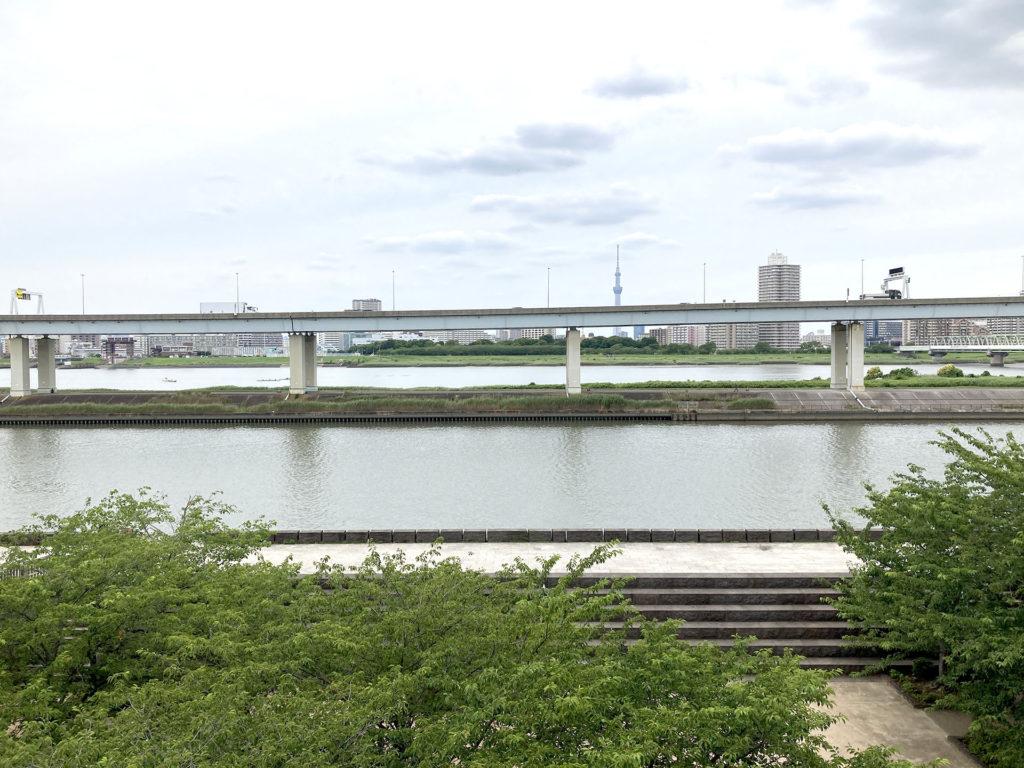 新川西 火の見櫓から見たスカイツリー